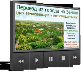 http://shedevriki.ru/image/vd005.png